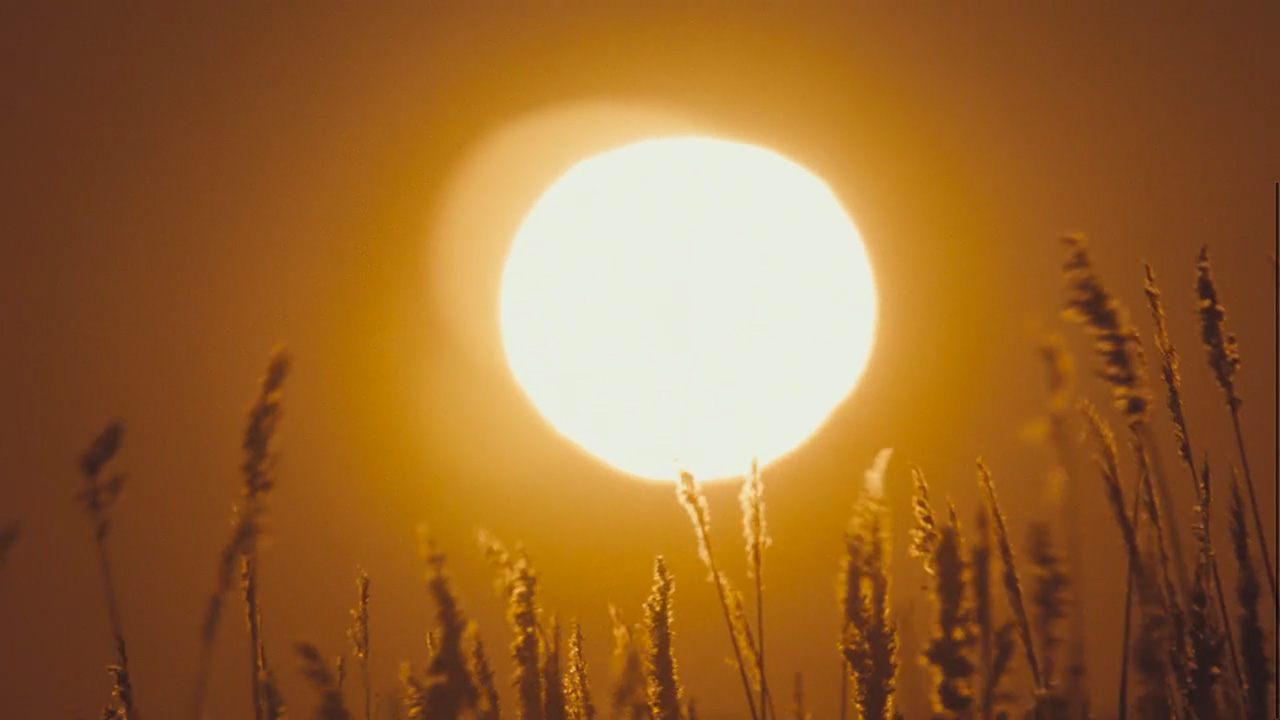 """Setting sun — """"Weight of Love"""" by The Black Keys (Video still: Theo Wenner)"""